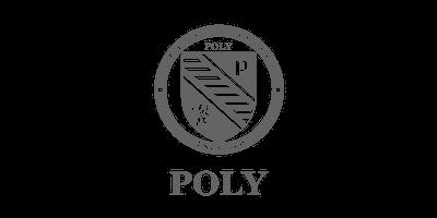 Poly School Logo